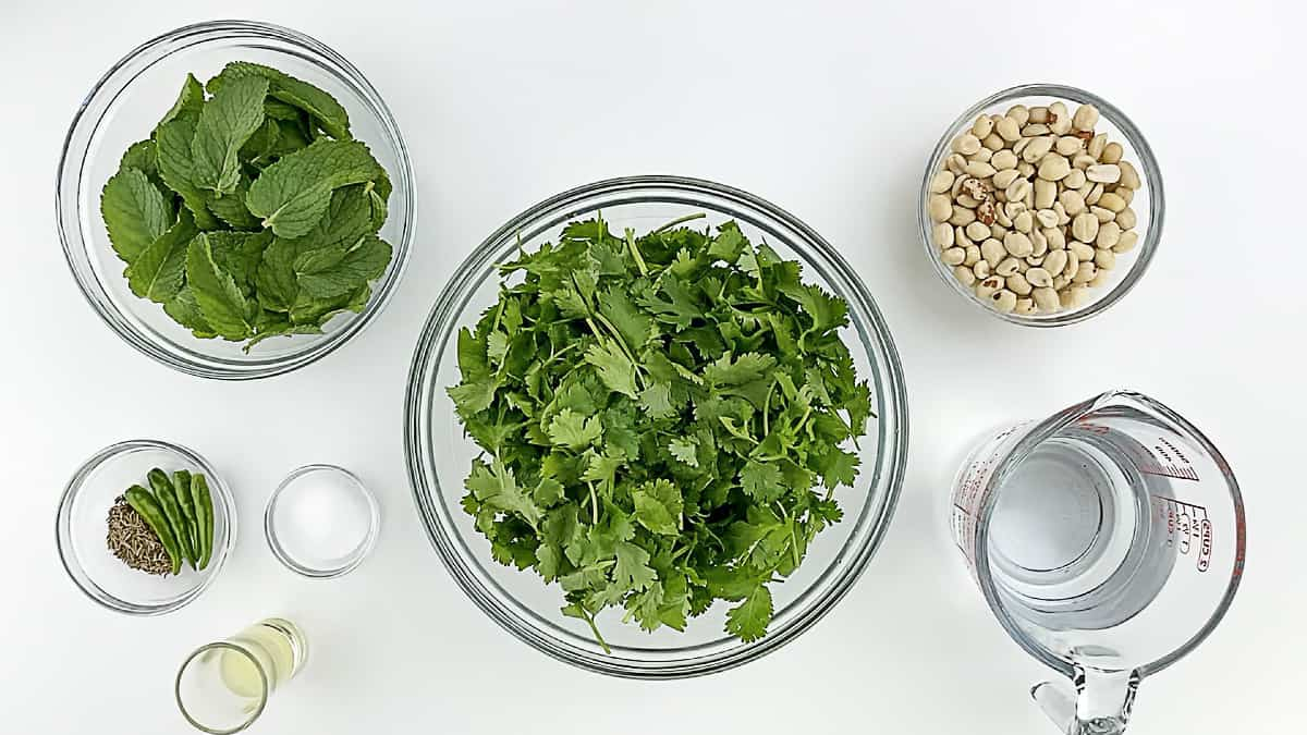 top shot of all the ingredients to make green chutney for sandwich